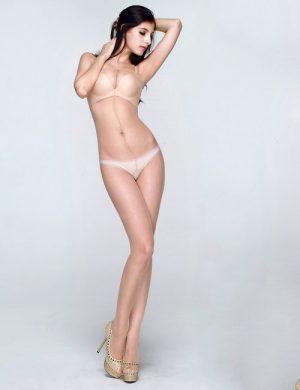 jual Bodystocking Crotchless Sheer Shiny Body